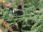 111732_pertempuran-di-somalia